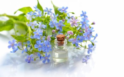 Essential Oil and Massage Benefits